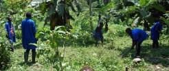 Leerkracht Joline Mukongo is een rolmodel voor meisjes in het landbouw-onderwijs in de DR Congo