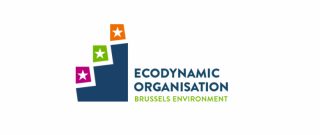 Ecodynamic Organisation