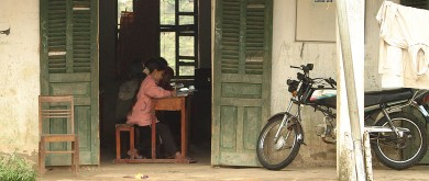 Vietnam, 2008: Actieve deelnemers in onderwijs en landbouw