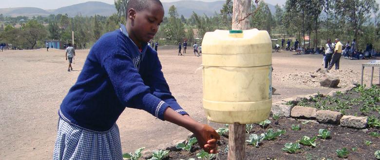 Kenya - Healty Learning in Primary Schools